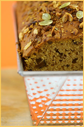 Two-Colored Squash Loaf Cake Recipes — Dishmaps