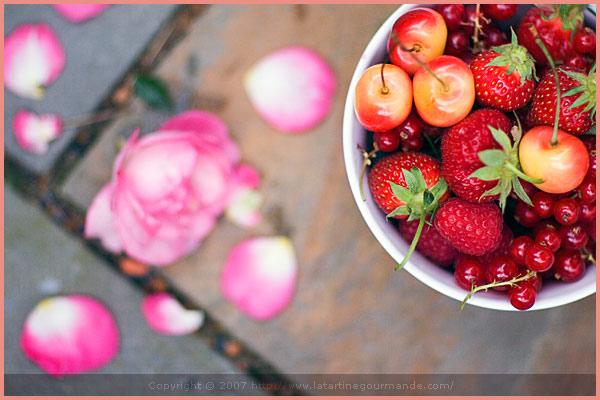 culinate tartine gourmande red currant fruit summer