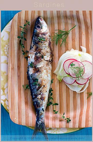 BBQ grilled sardines