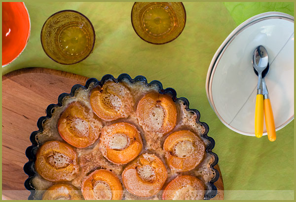 apricot clafoutis chestnut