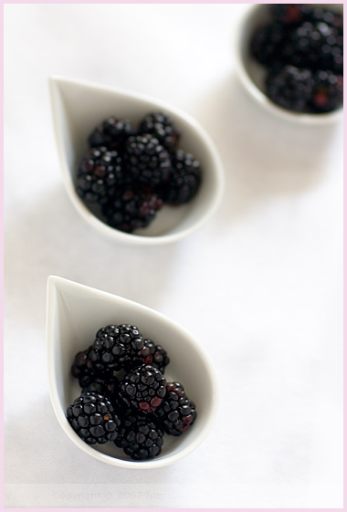A Taste of Blackberries Links | Mr..