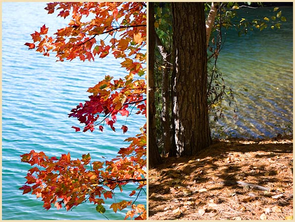 walden pond fall new england