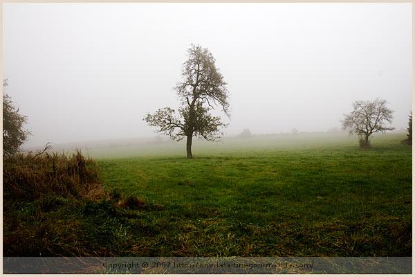 lorraine countryside