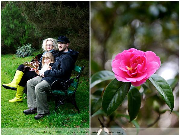 mount usher gardens ireland