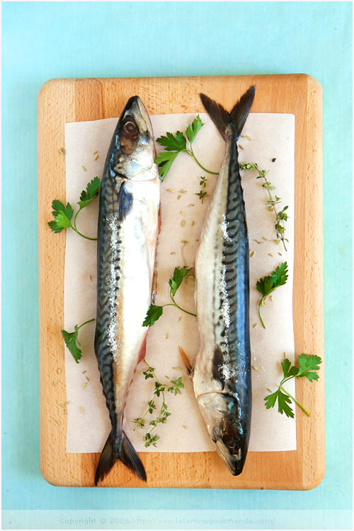 mackerel whole cooked fish
