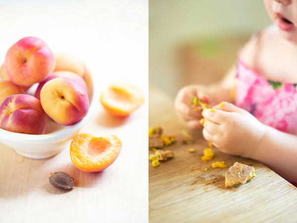 apricot tart gluten free
