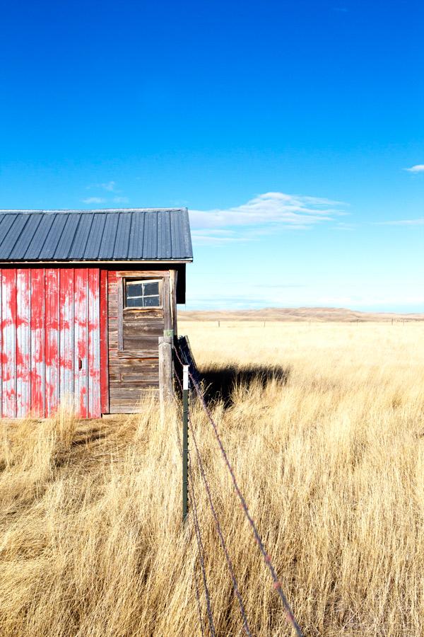 Wild Buffalo Ranch Dan O Brien South Dakota