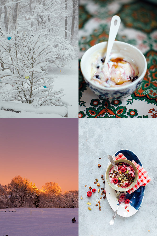 collage-snow-(1)